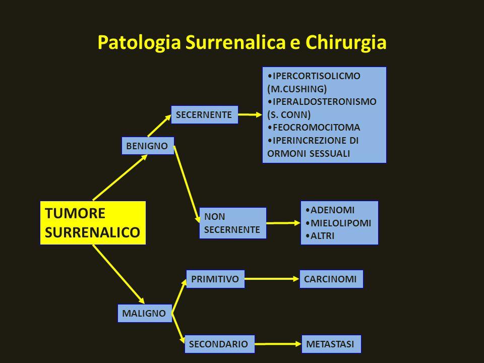 TUMORE SURRENALICO BENIGNO MALIGNO SECERNENTE NON SECERNENTE PRIMITIVO SECONDARIO ADENOMI MIELOLIPOMI ALTRI IPERCORTISOLICMO (M.CUSHING) IPERALDOSTERO