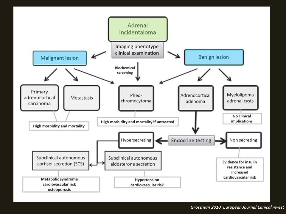 Grossman 2010 European Journal Clinical invest