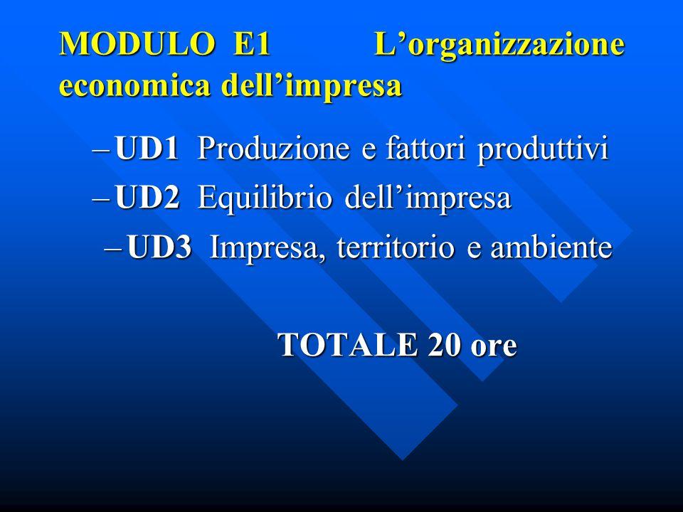 MODULO E1 L'organizzazione economica dell'impresa –UD1 Produzione e fattori produttivi –UD2 Equilibrio dell'impresa –UD3 Impresa, territorio e ambiente TOTALE 20 ore TOTALE 20 ore