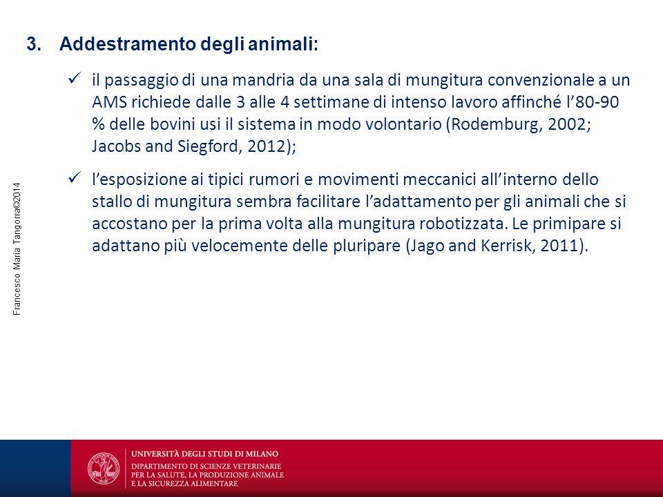 Francesco Maria Tangorra©2014 3.Addestramento degli animali: il passaggio di una mandria da una sala di mungitura convenzionale a un AMS richiede dall