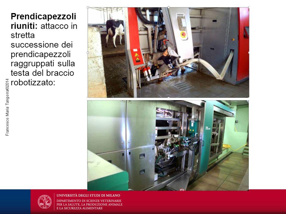 Francesco Maria Tangorra©2014 Prendicapezzoli riuniti: attacco in stretta successione dei prendicapezzoli raggruppati sulla testa del braccio robotizz
