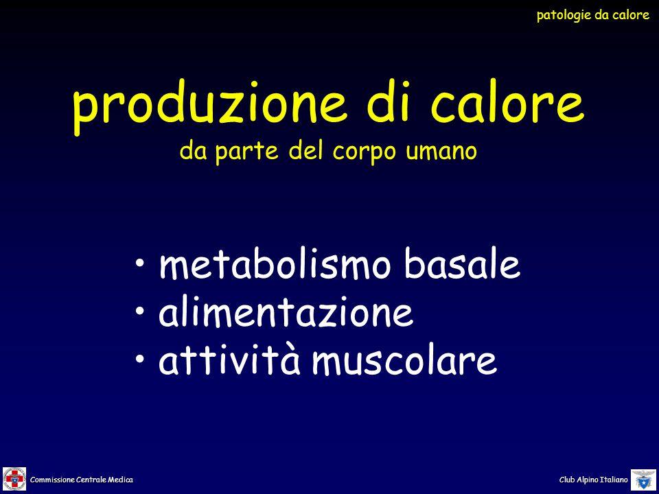 Commissione Centrale Medica Club Alpino Italiano meccanismi di termoregolazione attivati dal caldo sudorazione  respirazione vasodilatazione cutanea apatia e inerzia patologie da calore