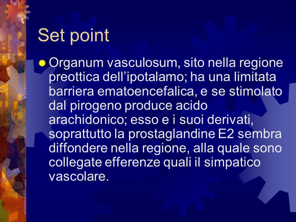 Set point  Organum vasculosum, sito nella regione preottica dell'ipotalamo; ha una limitata barriera ematoencefalica, e se stimolato dal pirogeno pro