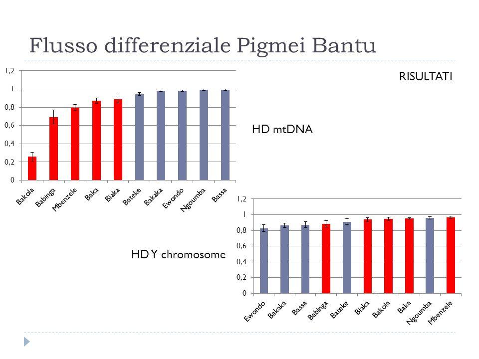 Flusso differenziale Pigmei Bantu RISULTATI HD mtDNA HD Y chromosome