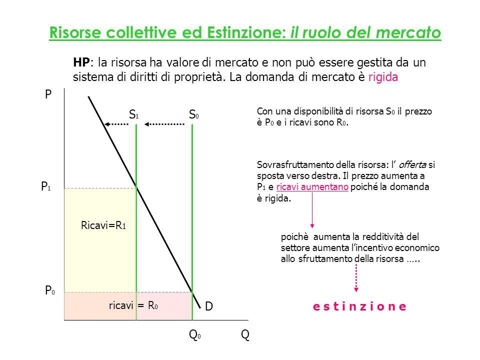 ricavi = R 0 HP: la risorsa ha valore di mercato e non può essere gestita da un sistema di diritti di proprietà.