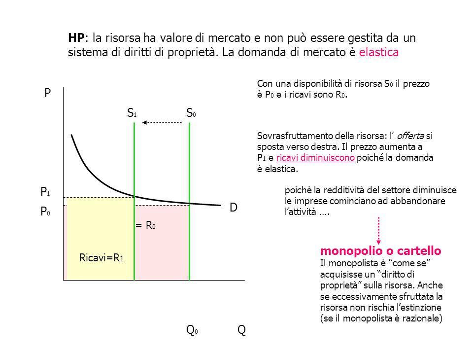ricavi = R 0 HP: la risorsa ha valore di mercato e non può essere gestita da un sistema di diritti di proprietà. La domanda di mercato è elastica P QQ