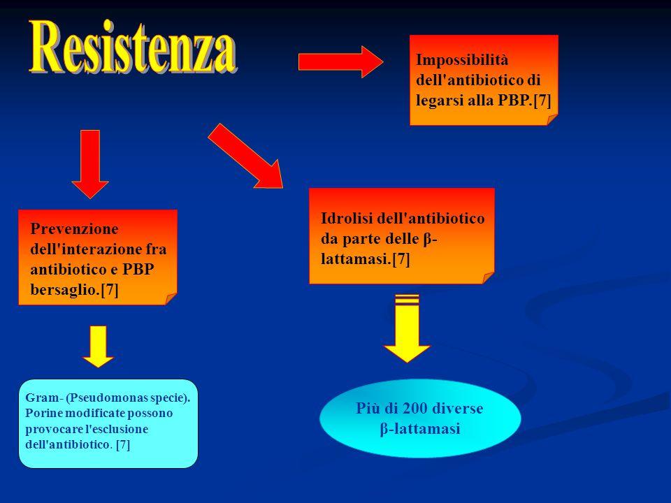 Prevenzione dell'interazione fra antibiotico e PBP bersaglio.[7] Impossibilità dell'antibiotico di legarsi alla PBP.[7] Idrolisi dell'antibiotico da p