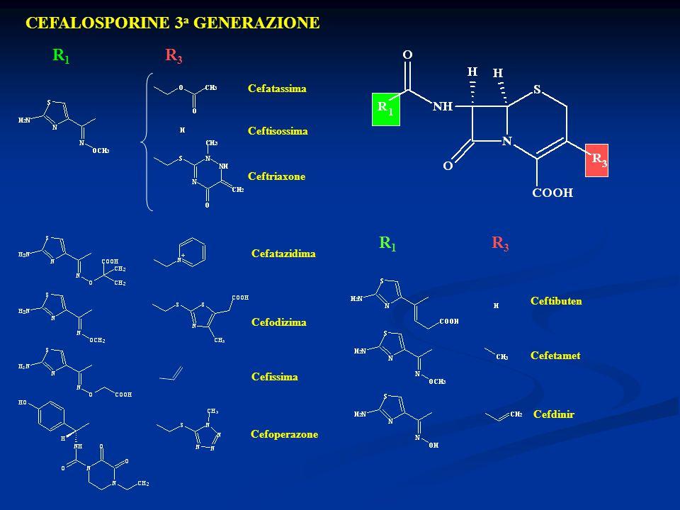 CEFALOSPORINE 3 a GENERAZIONE Cefatassima Ceftisossima Ceftriaxone Cefatazidima Cefodizima Cefissima Cefoperazone R1R1 R3R3 Ceftibuten Cefetamet Cefdi