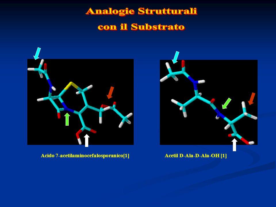 Acido 7-acetilaminocefalosporanico[1]Acetil D-Ala-D-Ala-OH [1]