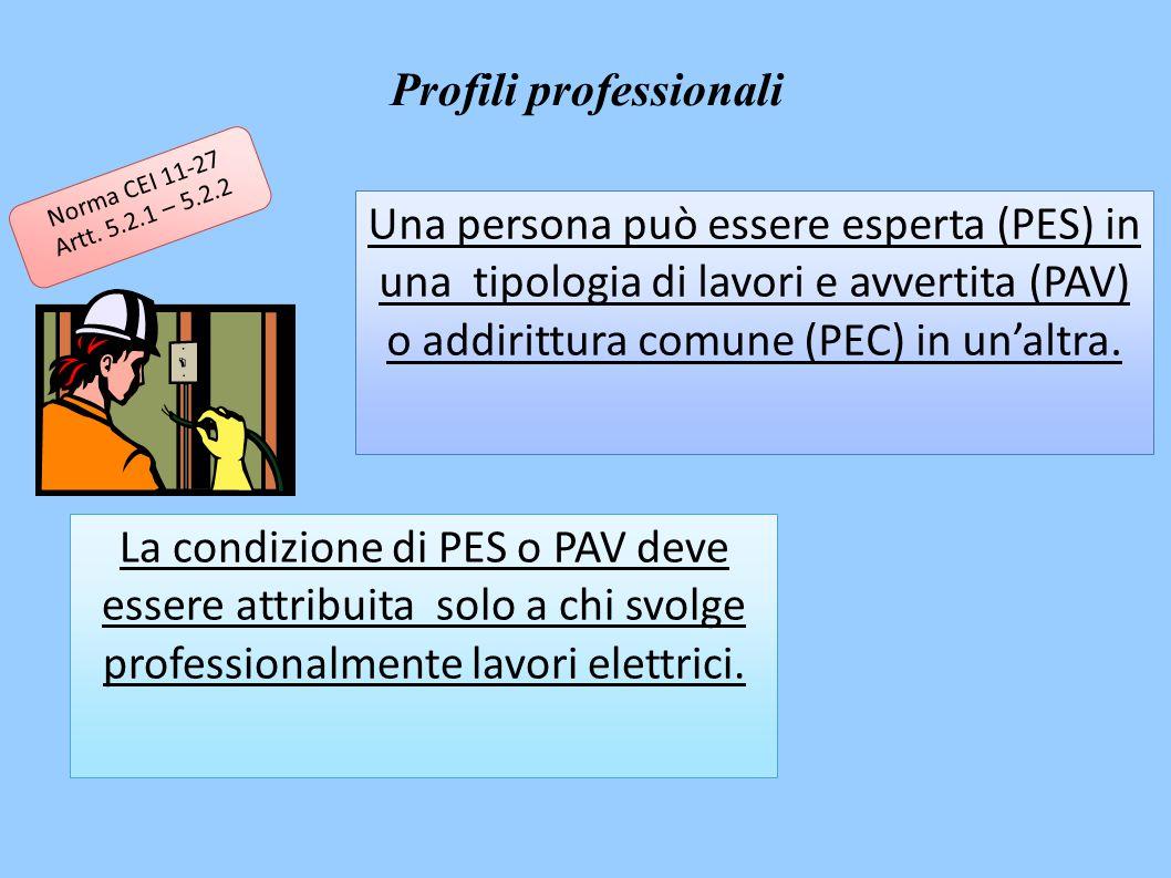 Una persona può essere esperta (PES) in una tipologia di lavori e avvertita (PAV) o addirittura comune (PEC) in un'altra.