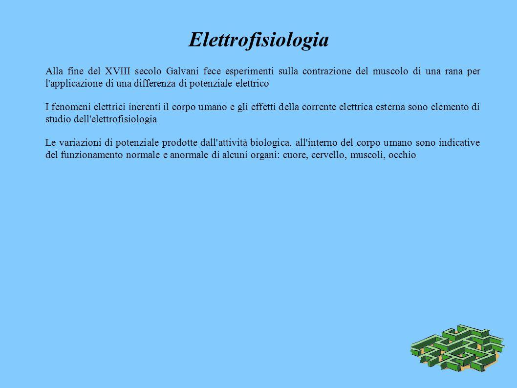Elettrofisiologia Alla fine del XVIII secolo Galvani fece esperimenti sulla contrazione del muscolo di una rana per l applicazione di una differenza di potenziale elettrico I fenomeni elettrici inerenti il corpo umano e gli effetti della corrente elettrica esterna sono elemento di studio dell elettrofisiologia Le variazioni di potenziale prodotte dall attività biologica, all interno del corpo umano sono indicative del funzionamento normale e anormale di alcuni organi: cuore, cervello, muscoli, occhio