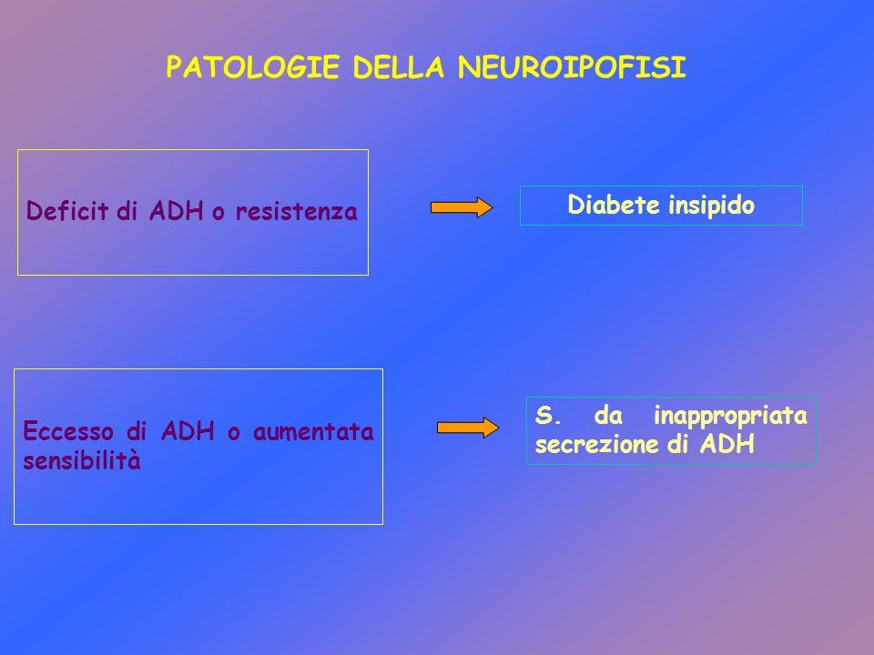 PATOLOGIE DELLA NEUROIPOFISI Deficit di ADH o resistenza Diabete insipido Eccesso di ADH o aumentata sensibilità S. da inappropriata secrezione di ADH