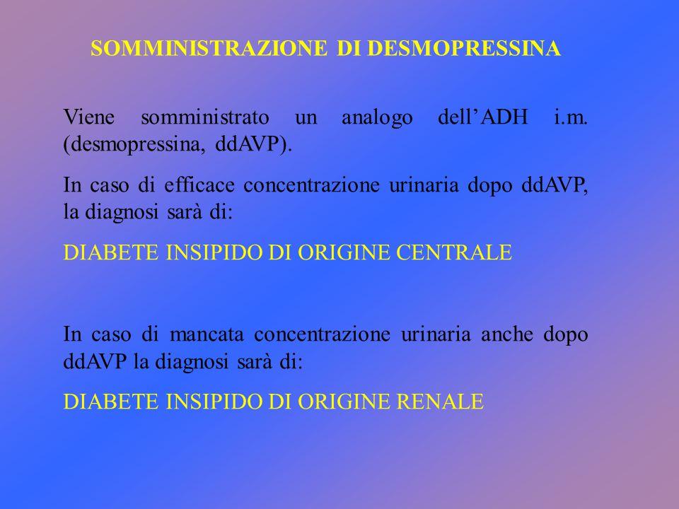 SOMMINISTRAZIONE DI DESMOPRESSINA Viene somministrato un analogo dell'ADH i.m. (desmopressina, ddAVP). In caso di efficace concentrazione urinaria dop