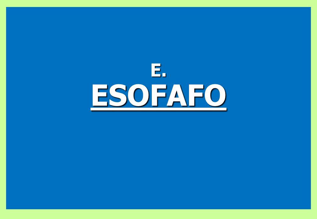 E.ESOFAFO