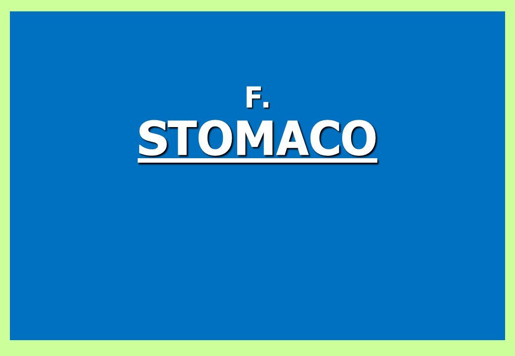 F.STOMACO