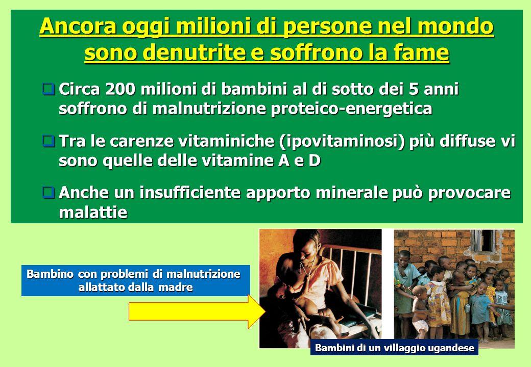 Ancora oggi milioni di persone nel mondo sono denutrite e soffrono la fame  Circa 200 milioni di bambini al di sotto dei 5 anni soffrono di malnutriz