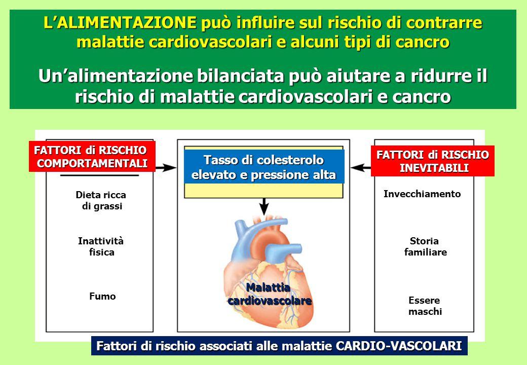 L'ALIMENTAZIONE può influire sul rischio di contrarre malattie cardiovascolari e alcuni tipi di cancro Un'alimentazione bilanciata può aiutare a ridur