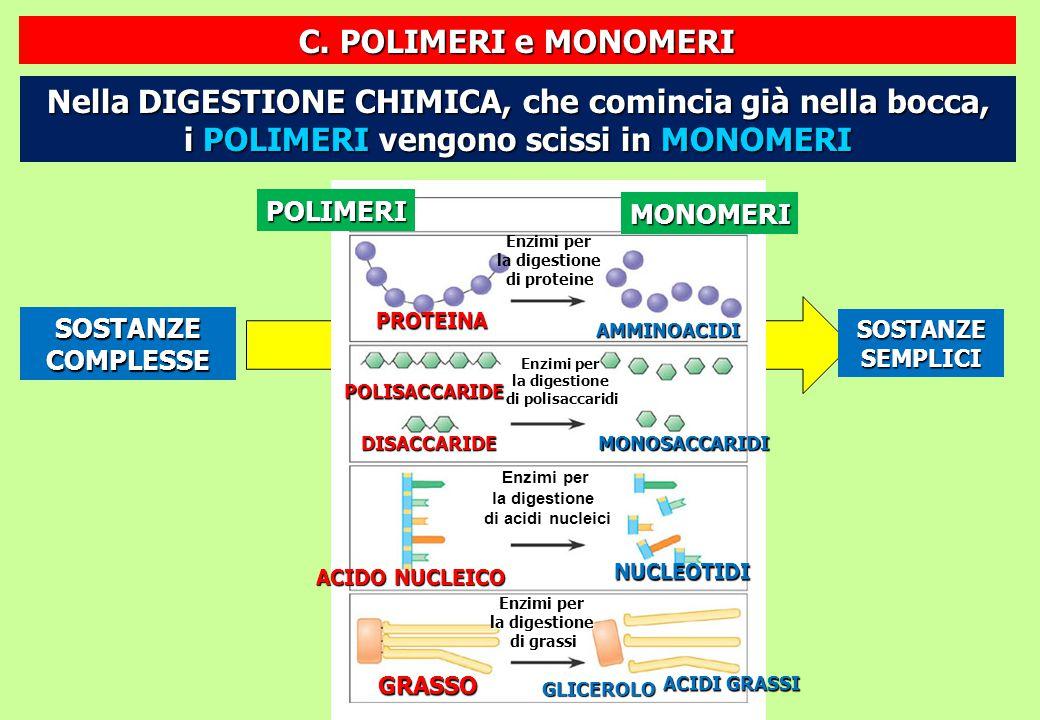 Enzimi per la digestione di grassi POLIMERI MONOMERI Enzimi per la digestione di proteine PROTEINA AMMINOACIDI POLISACCARIDE DISACCARIDE Enzimi per la