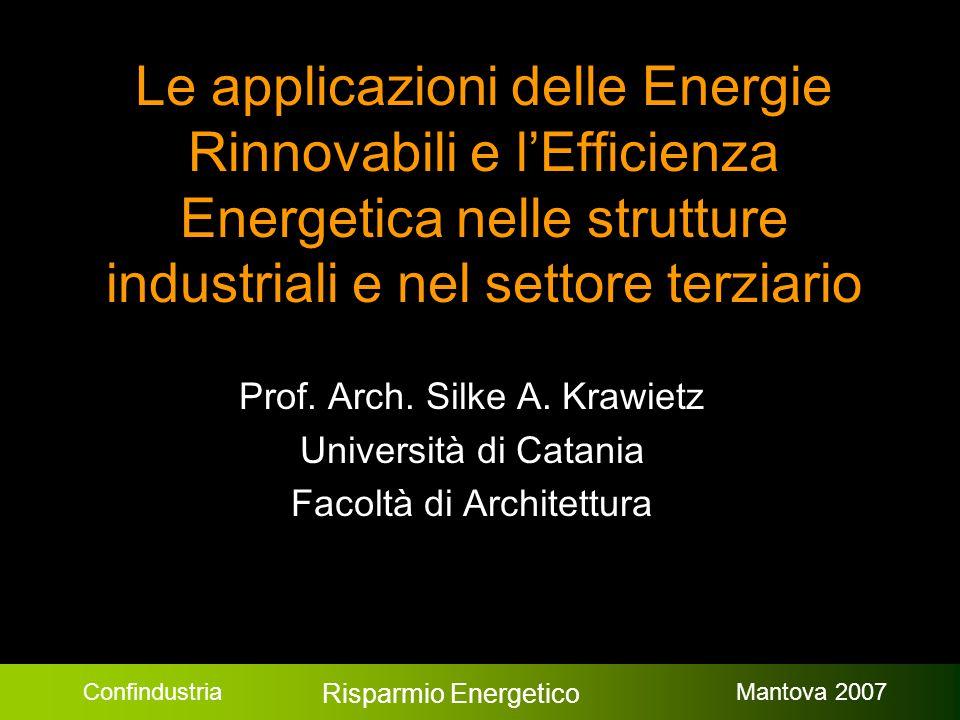 Confindustria Risparmio Energetico Mantova 2007 Le applicazioni delle Energie Rinnovabili e l'Efficienza Energetica nelle strutture industriali e nel settore terziario Prof.