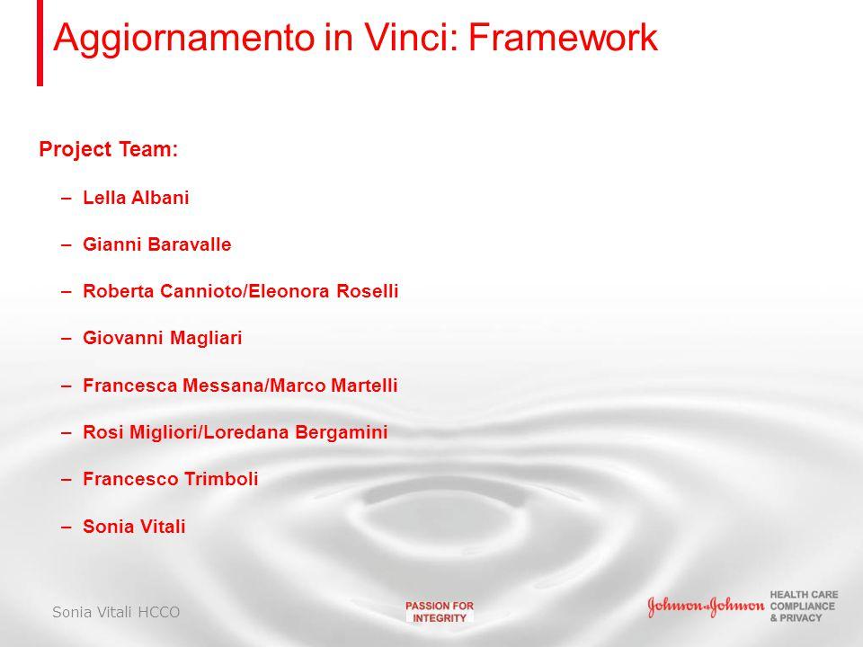 Aggiornamento in Vinci: Framework Project Team: –Lella Albani –Gianni Baravalle –Roberta Cannioto/Eleonora Roselli –Giovanni Magliari –Francesca Messa