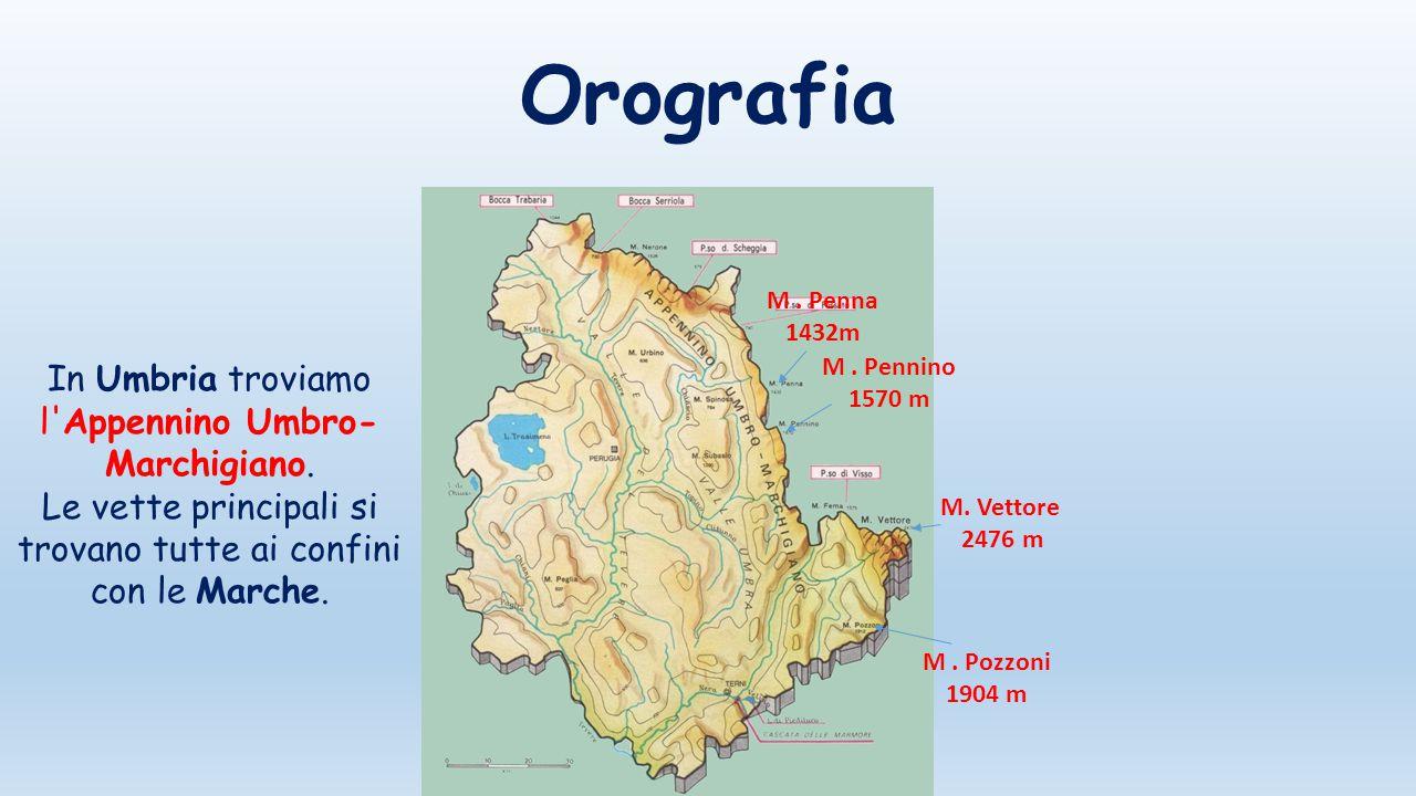 Orografia M. Pennino 1570 m M. Vettore 2476 m M. Pozzoni 1904 m In Umbria troviamo l'Appennino Umbro- Marchigiano. Le vette principali si trovano tutt