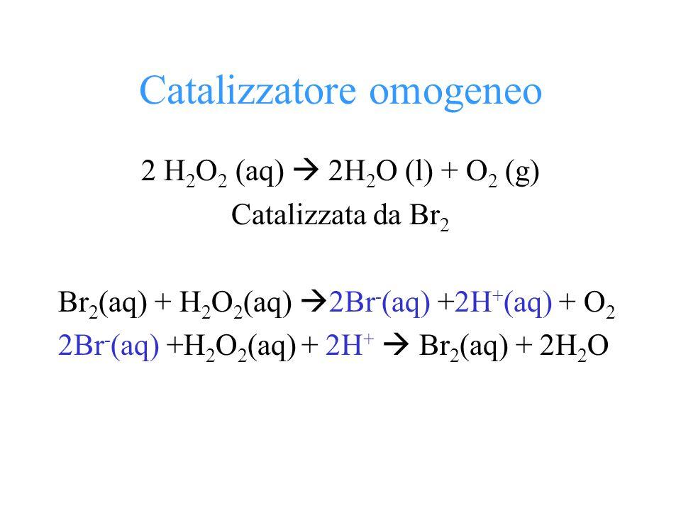 Catalizzatore omogeneo 2 H 2 O 2 (aq)  2H 2 O (l) + O 2 (g) Catalizzata da Br 2 Br 2 (aq) + H 2 O 2 (aq)  2Br - (aq) +2H + (aq) + O 2 2Br - (aq) +H