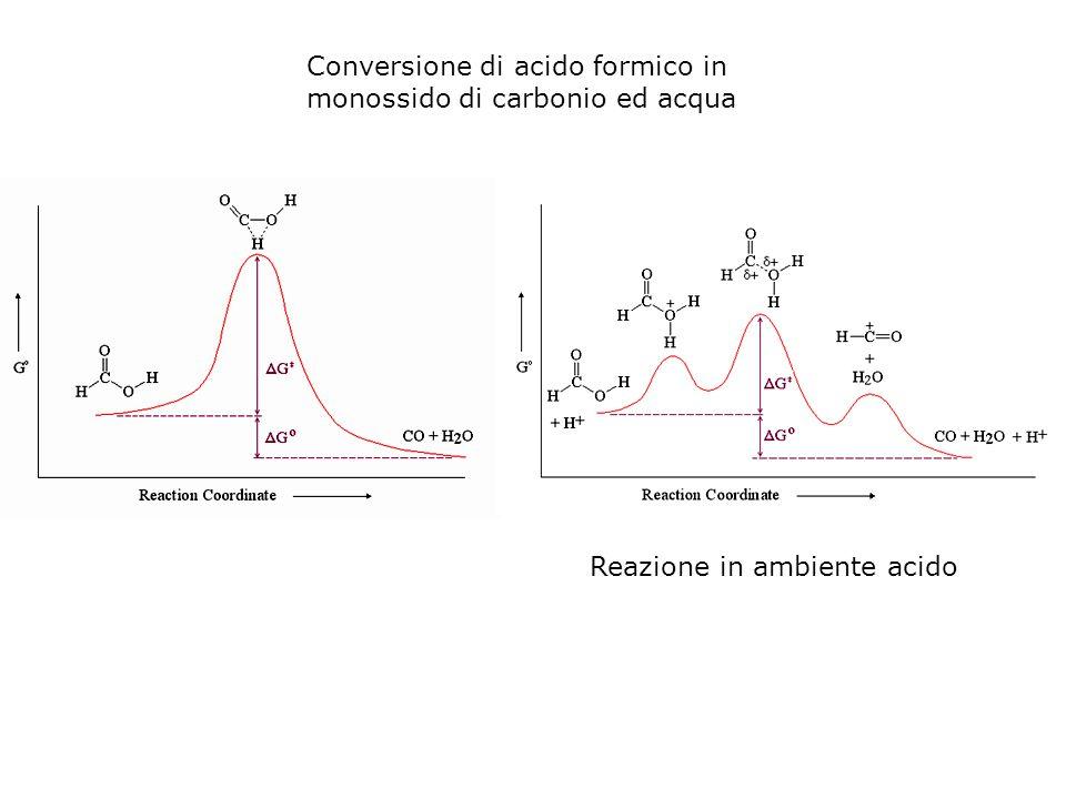 Come cambia il plot di Arrhenius per una reazione catalizzata.
