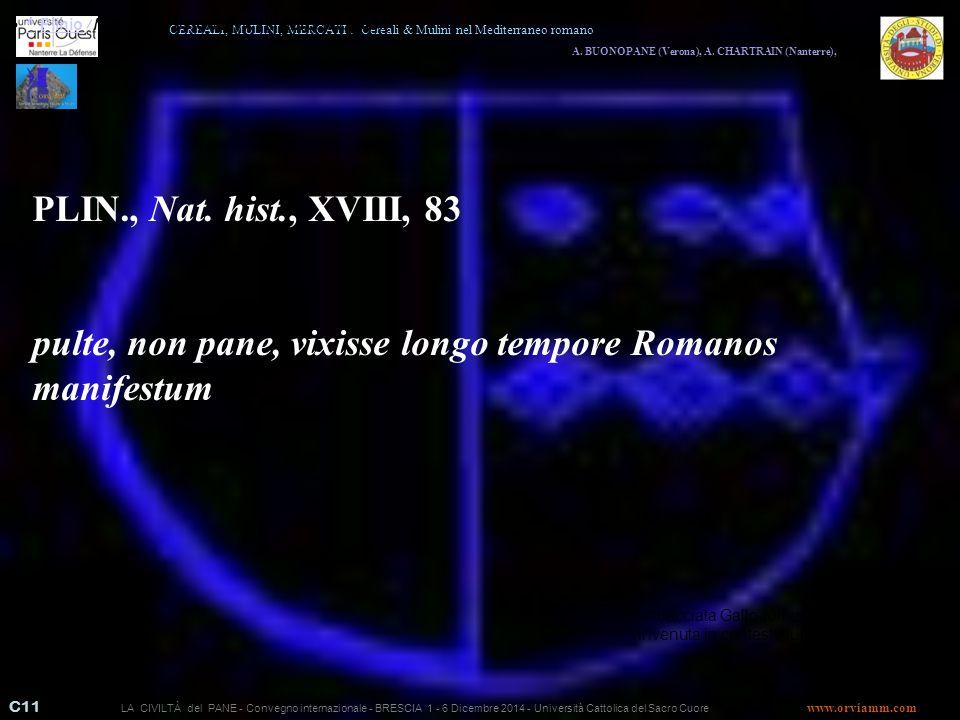 C11 A.BUONOPANE (Verona), A.