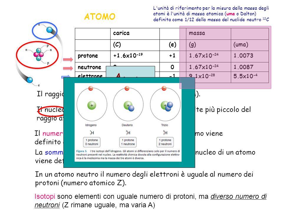 5.5x10 -4 9.1x10 -28 -1.6x10 -19 elettrone 1.00871.67x10 -24 00neutrone 1.00731.67x10 -24 +1+1.6x10 -19 protone (uma)(g)(e)(C) massa carica Il raggio