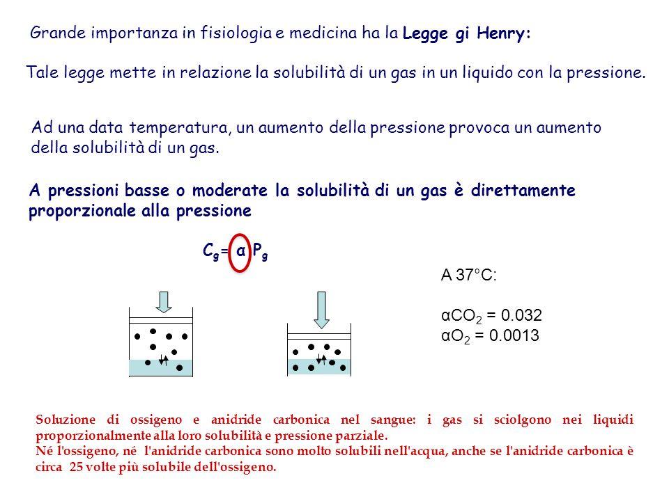 Grande importanza in fisiologia e medicina ha la Legge gi Henry: Tale legge mette in relazione la solubilità di un gas in un liquido con la pressione.