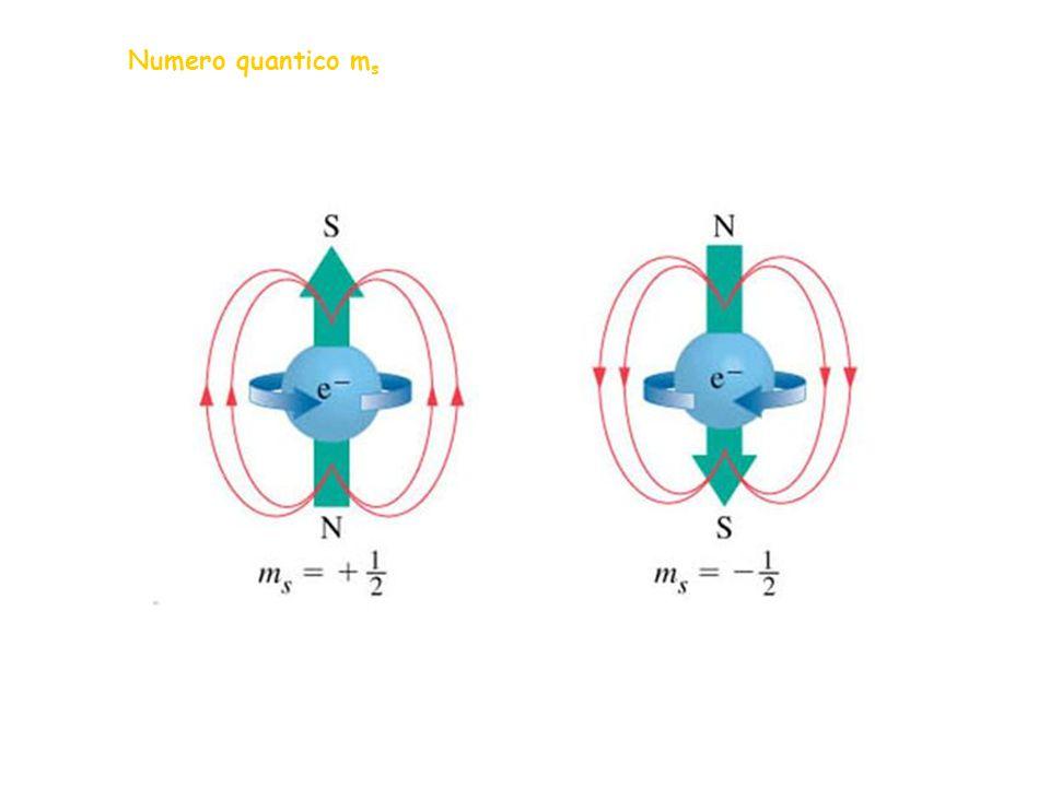 Numero quantico m s