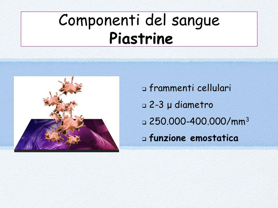 Componenti del sangue Piastrine  frammenti cellulari  2-3 μ diametro  250.000-400.000/mm 3  funzione emostatica