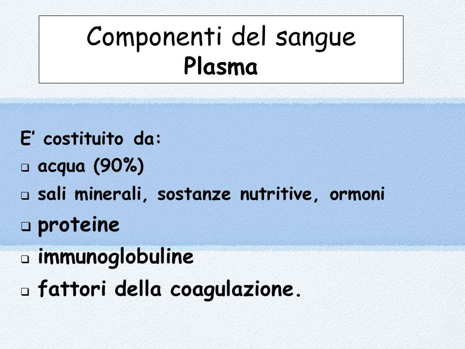 E' costituito da:  acqua (90%)  sali minerali, sostanze nutritive, ormoni  proteine  immunoglobuline  fattori della coagulazione.