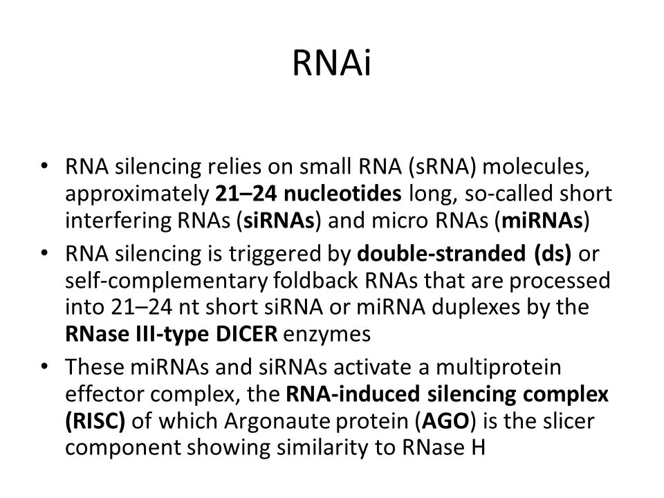 RNA silencing relies on small RNA (sRNA) molecules, approximately 21–24 nucleotides long, so-called short interfering RNAs (siRNAs) and micro RNAs (mi