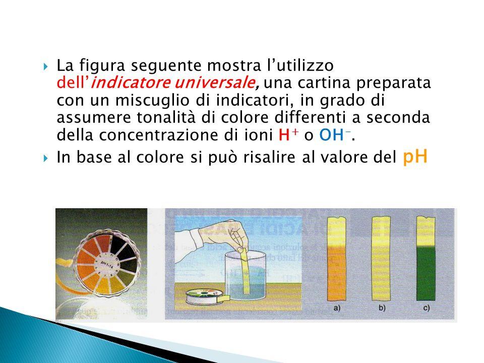  La figura seguente mostra l'utilizzo dell'indicatore universale, una cartina preparata con un miscuglio di indicatori, in grado di assumere tonalità