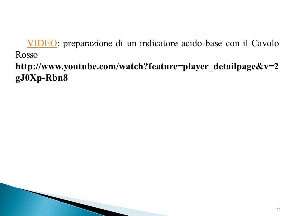 55 VIDEO: preparazione di un indicatore acido-base con il Cavolo RossoVIDEO http://www.youtube.com/watch?feature=player_detailpage&v=2 gJ0Xp-Rbn8