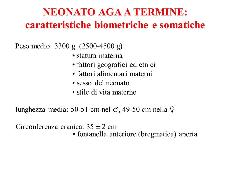 NEONATO AGA A TERMINE: caratteristiche biometriche e somatiche Peso medio: 3300 g (2500-4500 g) statura materna fattori geografici ed etnici fattori a