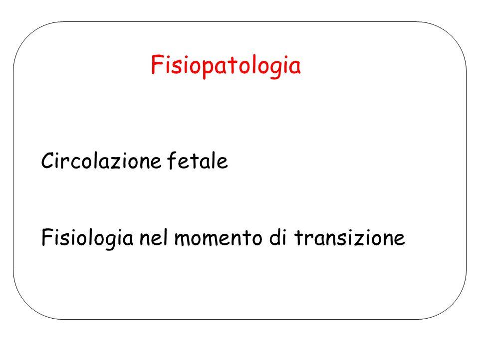 Fisiopatologia Circolazione fetale Fisiologia nel momento di transizione