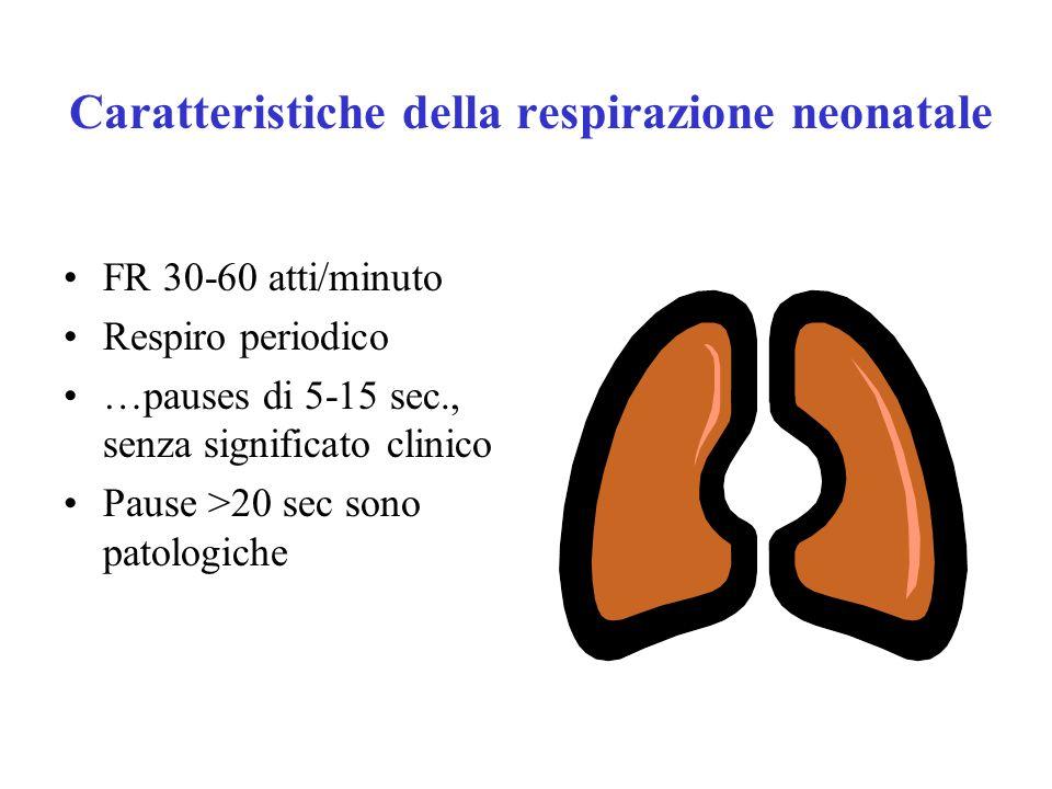 Adattamento del neonato alla vita extrauterina Sistema respiratorio –surfattante polmonare –Diminuisce la tensione superficiale degli alveoli –Permette agli alveoli di riempirsi di aria –Previene il collasso degli alveoli durante l'espirazione –Mantiene il volume residuo –Viene sintetizzato in quantità sufficienti solo a partire dalla 36 a settimana di età gestazionale