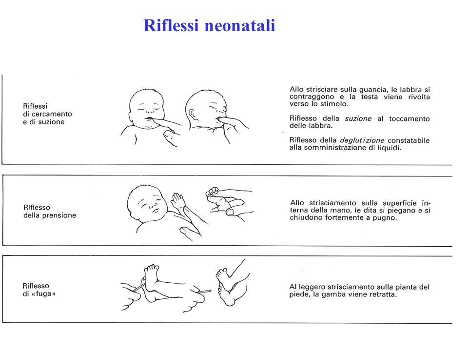 Riflessi neonatali