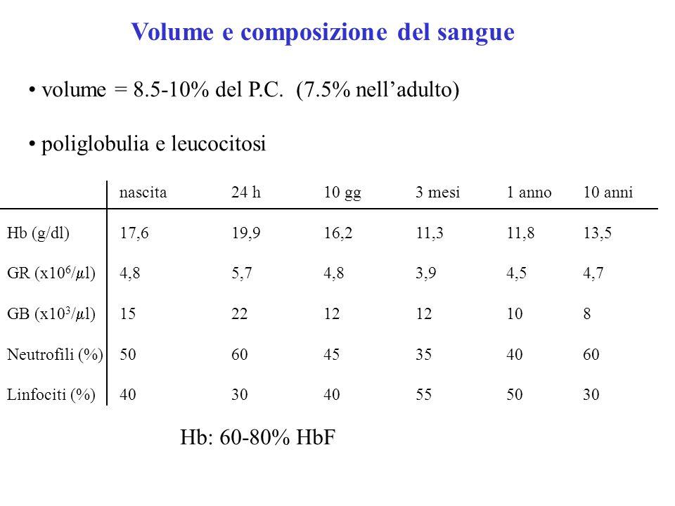 Composizione del plasma alti valori fosfati e fosfatasi alcalina bilirubina elevata (ittero fisiologico) aumento acido lattico ALT, AST elevate nelle prime settimane ipoglicemia (fino a 30 mg/dl nel nato a termine) ipocalcemia bassi livelli fattori della coagulazione (specie vit.K-dipendenti)