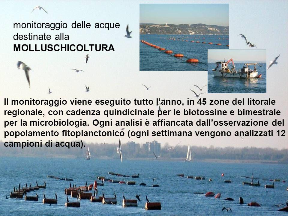 monitoraggio delle acque destinate alla MOLLUSCHICOLTURA Il monitoraggio viene eseguito tutto l'anno, in 45 zone del litorale regionale, con cadenza quindicinale per le biotossine e bimestrale per la microbiologia.