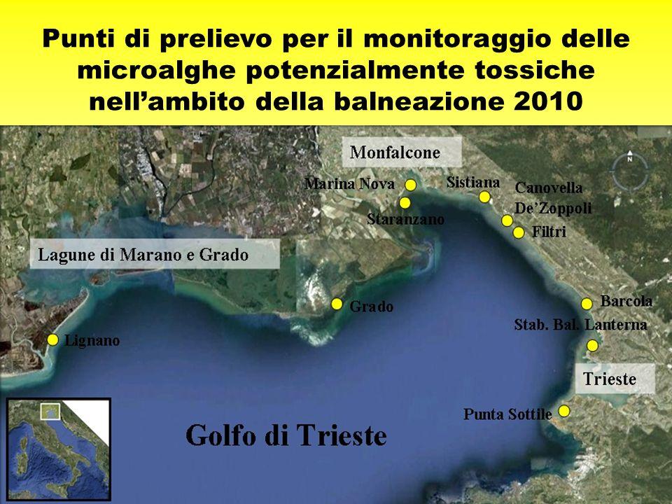 Punti di prelievo per il monitoraggio delle microalghe potenzialmente tossiche nell'ambito della balneazione 2010