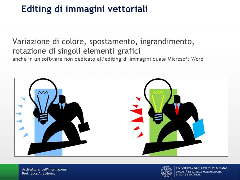 Variazione di colore, spostamento, ingrandimento, rotazione di singoli elementi grafici anche in un software non dedicato all'editing di immagini quale Microsoft Word Editing di immagini vettoriali Architettura dell informazione Prof.