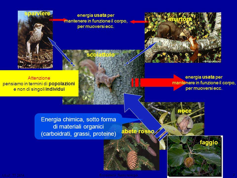 LiLu2, TT 2014 Ecosistemi: flusso energia 3 semi scoiattoli sparvieri e martore 100% 10% energia contenuta nella materia organica (cibo) energia contenuta nella materia organica 1% energia contenuta nella materia organica ci sarebbe abbastanza energia per un altro ipotetico anello.