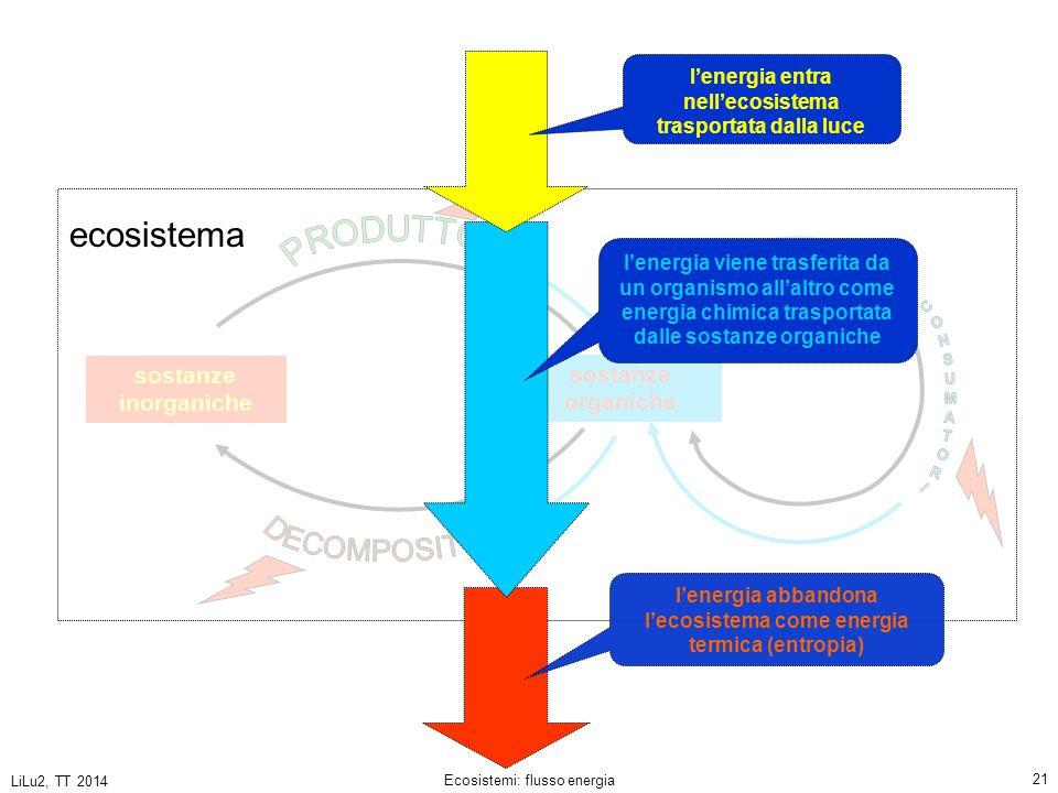 LiLu2, TT 2014 Ecosistemi: flusso energia 21 sostanze inorganiche sostanze organiche l'energia viene trasferita da un organismo all'altro come energia chimica trasportata dalle sostanze organiche l'energia entra nell'ecosistema trasportata dalla luce ecosistema l'energia abbandona l'ecosistema come energia termica (entropia)