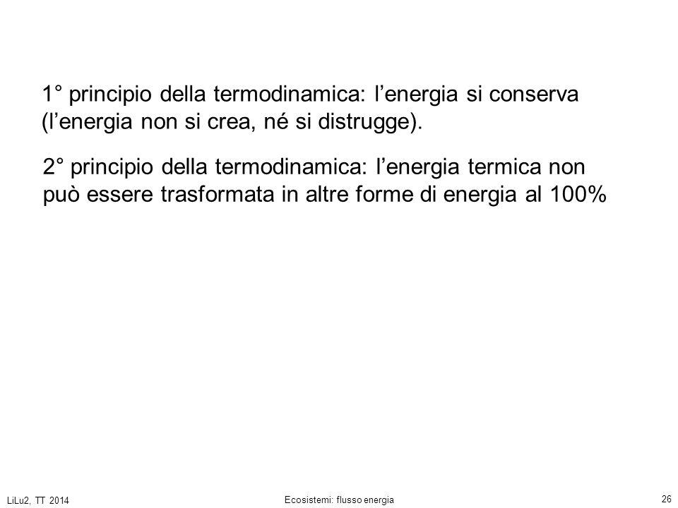 LiLu2, TT 2014 Ecosistemi: flusso energia 26 2° principio della termodinamica: l'energia termica non può essere trasformata in altre forme di energia al 100% 1° principio della termodinamica: l'energia si conserva (l'energia non si crea, né si distrugge).