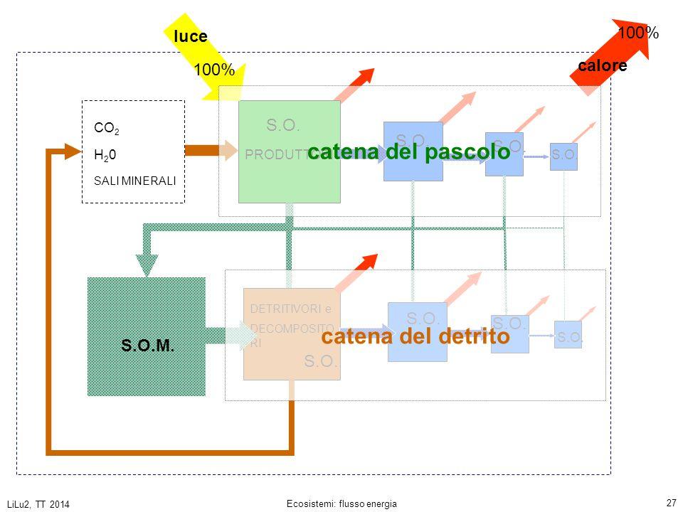LiLu2, TT 2014 Ecosistemi: flusso energia 27 PRODUTTORI DETRITIVORI e DECOMPOSITO RI CO 2 H20H20 SALI MINERALI S.O.