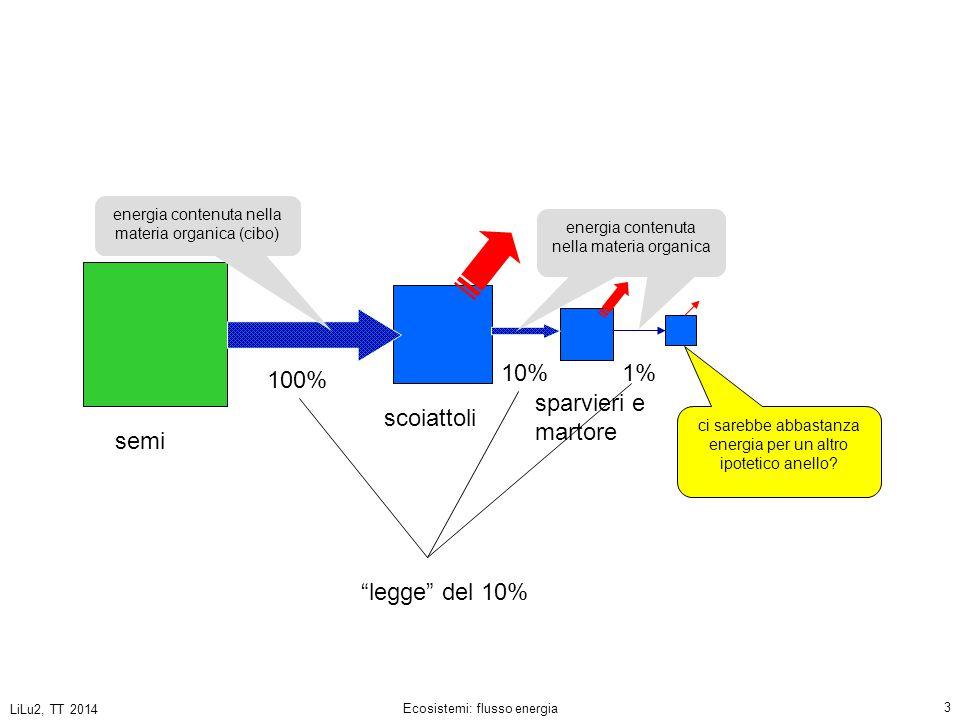 LiLu2, TT 2014 Ecosistemi: flusso energia 4 PRODUTTORI CONSUMATORI Energia effettivamente assorbita dai vegetali 100 unità (U) di energia portati dalla luce ca.