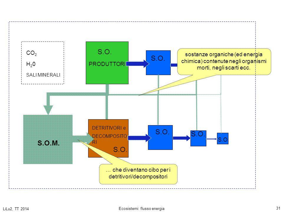 LiLu2, TT 2014 Ecosistemi: flusso energia 31 PRODUTTORI DETRITIVORI e DECOMPOSITO RI CO 2 H20H20 SALI MINERALI S.O.